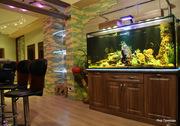 Изготовление аквариумов под ключ,  дизайн,  обслуживание