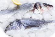 Сибас,  Дорадо,  форель,  семга,  оливковое масло,  и мн.другие виды морепродуктов