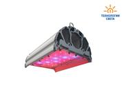 Универсальные светодиодные светильники для теплиц