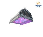 Фитосветильники светодиодные для теплиц