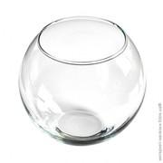 Круглый аквариум,  объемом 3 литра.