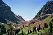1-10 дневные походы,  туры,  восхождения,  треккинги в горах Алматы