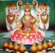 Турфирма Shri Lakshmi Travel - подберем для Вас тур
