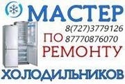 Александр. Профессиональный ремонт холодильников в Алматы. Гарантия!