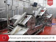 Линия обработки кишок Feleti от производителя!