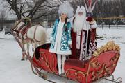 Дед Мороз и Снегурочка к вам на санях