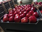 Соки прямого отжима весь ассортимент.  Свежие яблоки.
