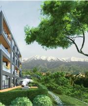 Здание с участком и бизнесом
