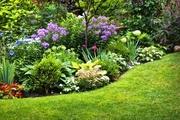 Услуги ландшафтного озеленителя