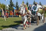 Свадебная карета в Алматы