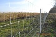 Сетка фермерская - бюджетное ограждение территории