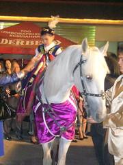 сундет ,  конь,  пони,  тони