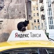 Регистрация водителей в Яндекс Такси